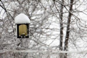 winter-1428270_640